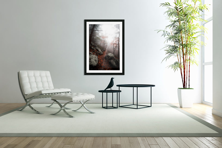 Moody Forest in Custom Picture Frame