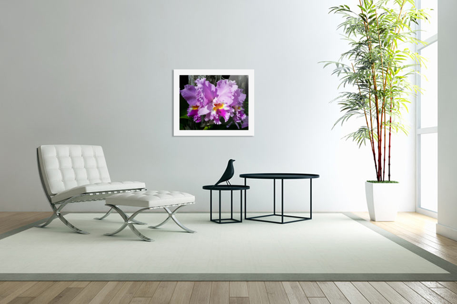 Frilly Orchid in Custom Picture Frame