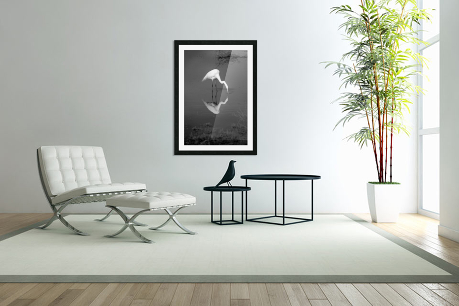 The Kiss White Egret BW in Custom Picture Frame