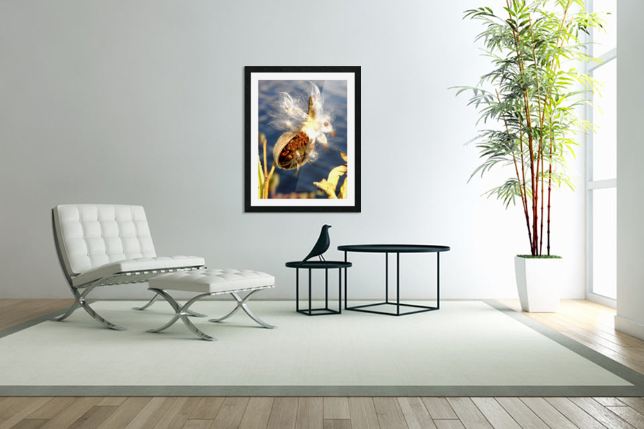Wild Thing in Custom Picture Frame