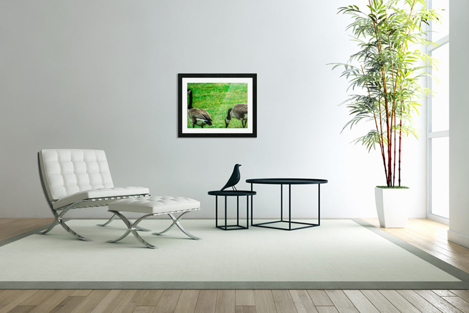 Geese in Custom Picture Frame