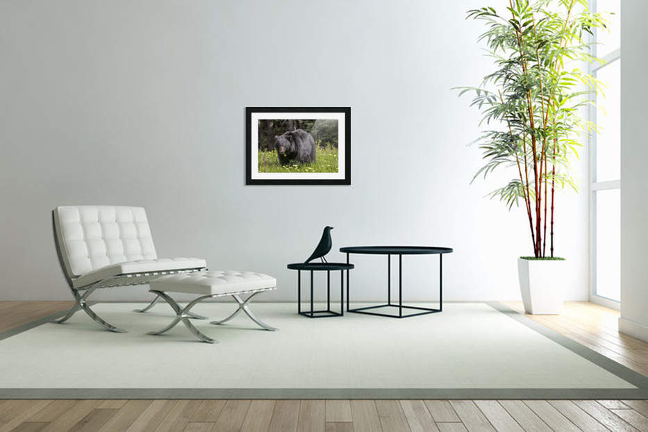 Black Bear With Dandelion in Custom Picture Frame