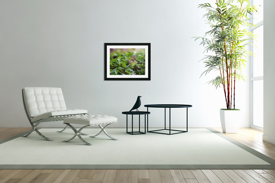 Duck In Plants in Custom Picture Frame