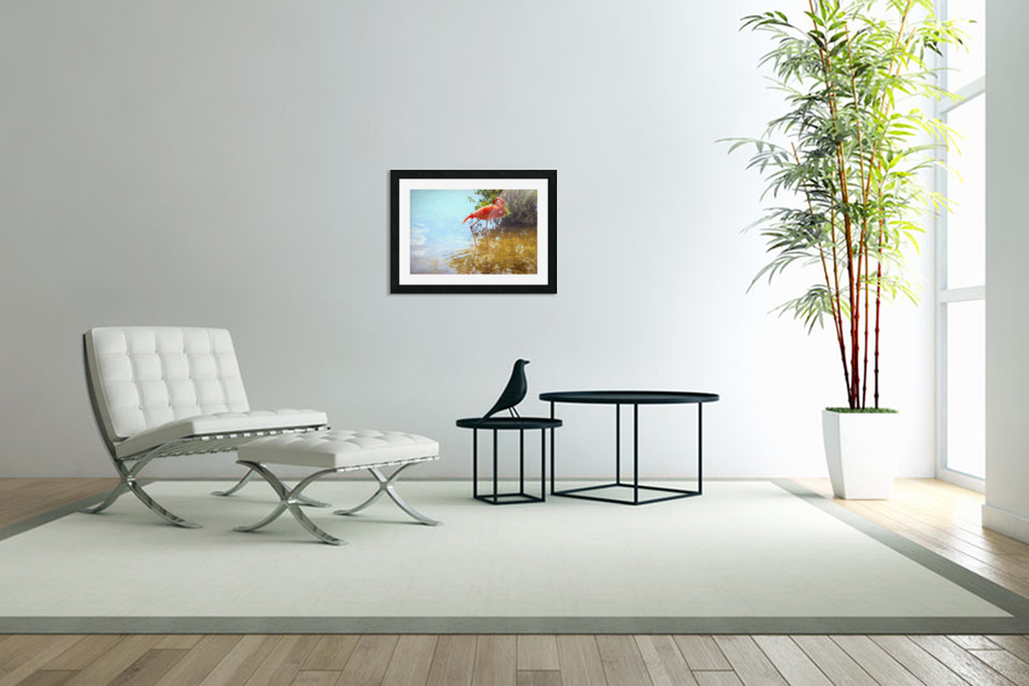 Pink Flamingo Wading In Water in Custom Picture Frame