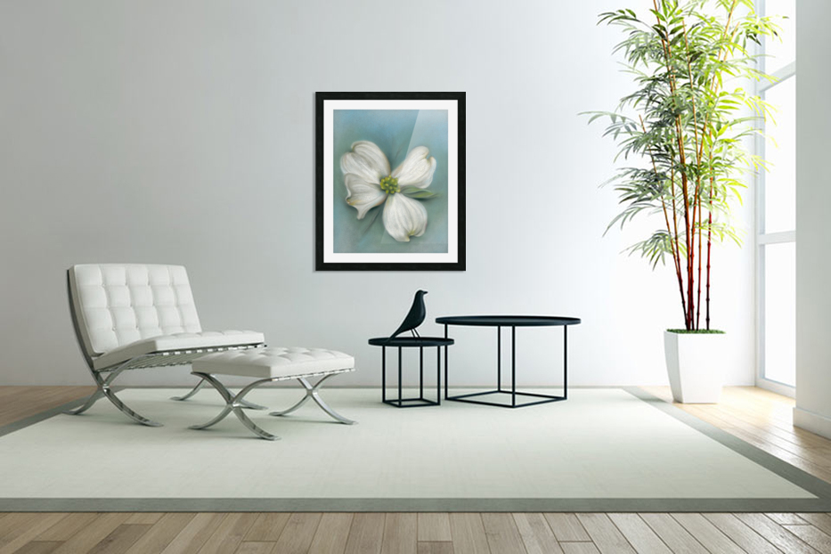 White Dogwood with Leaf in Custom Picture Frame