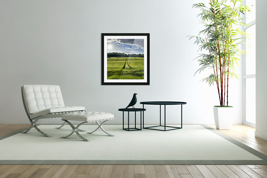 Wheat Fields in Custom Picture Frame