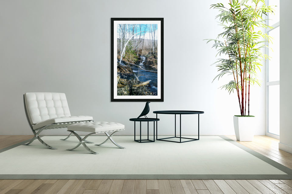 Brook through the Forest in Custom Picture Frame