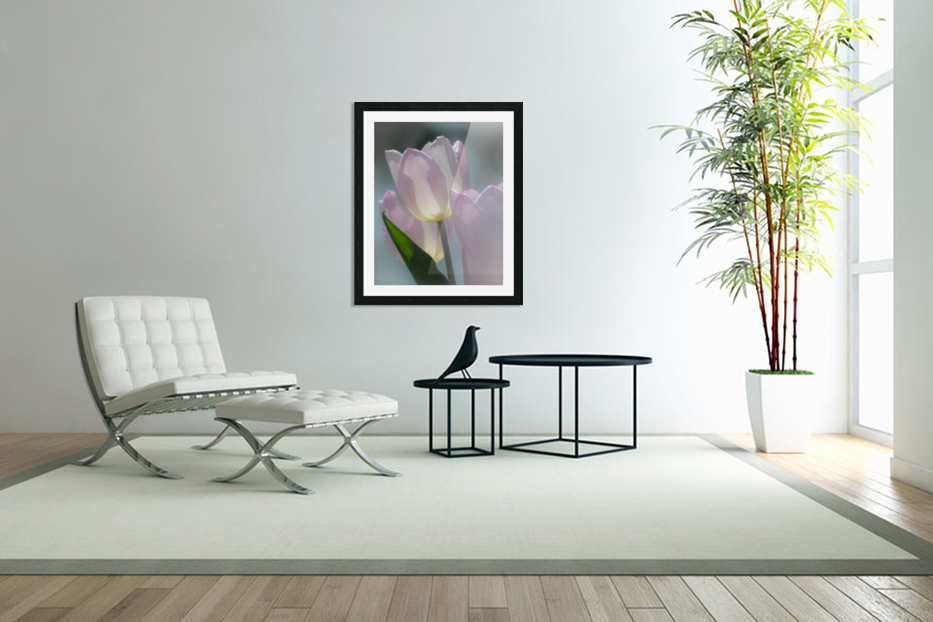 Pale Pink Tulips in Custom Picture Frame