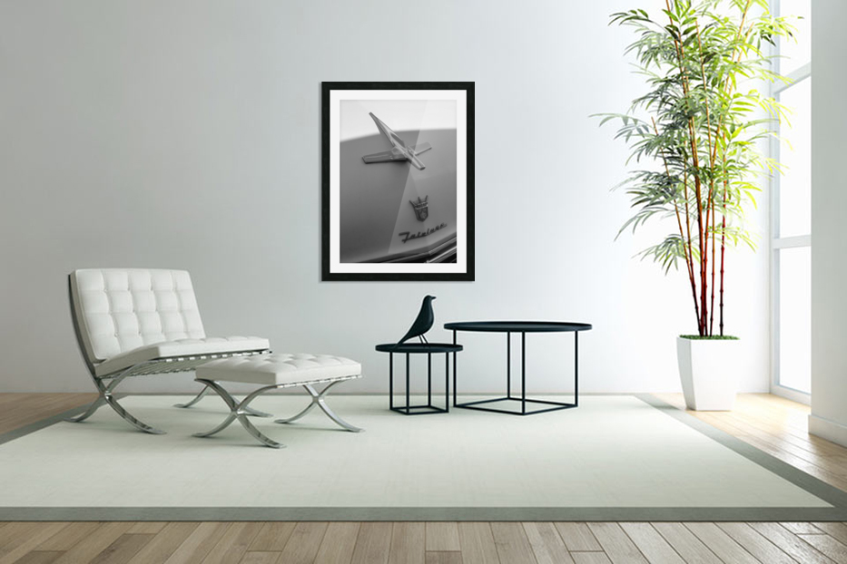 Fairlane in the Shade in Custom Picture Frame