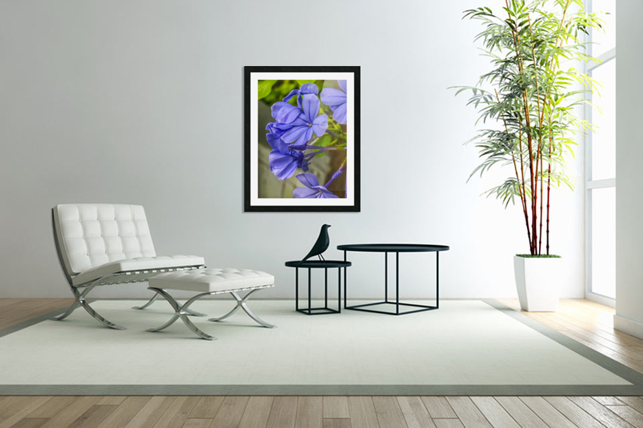 Purple Flowers in Custom Picture Frame