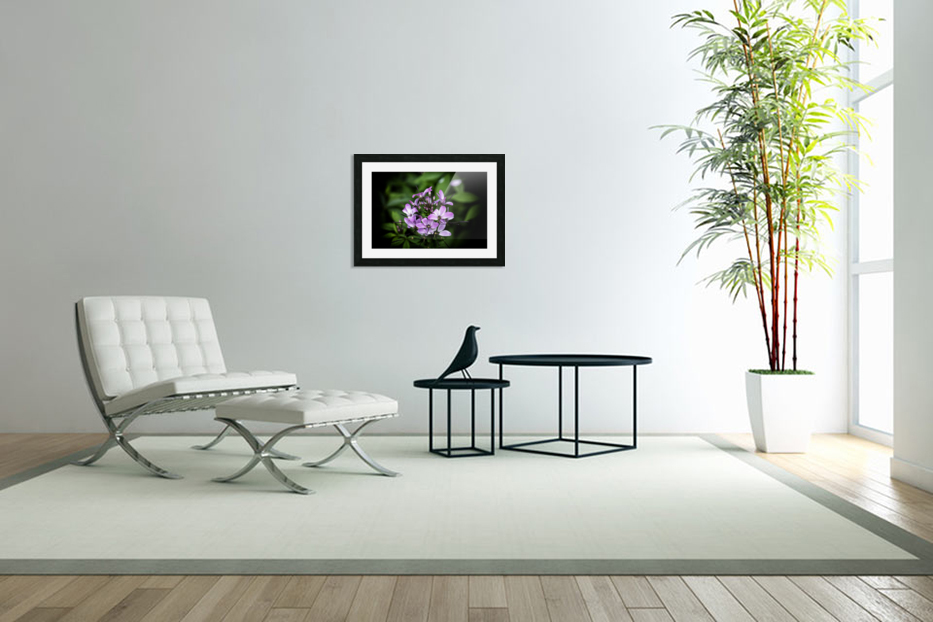 Beeplant in Custom Picture Frame