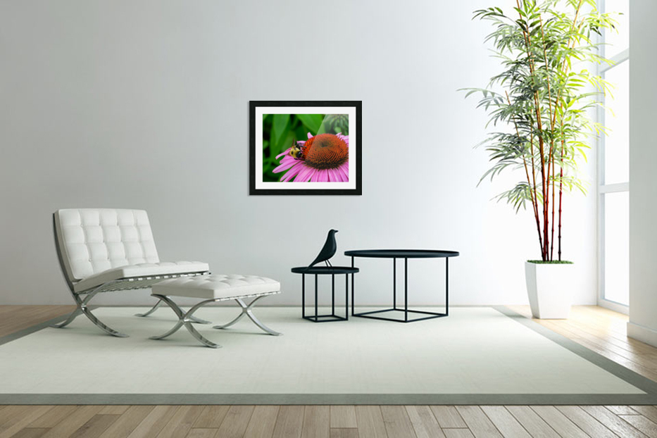 Bee in Custom Picture Frame