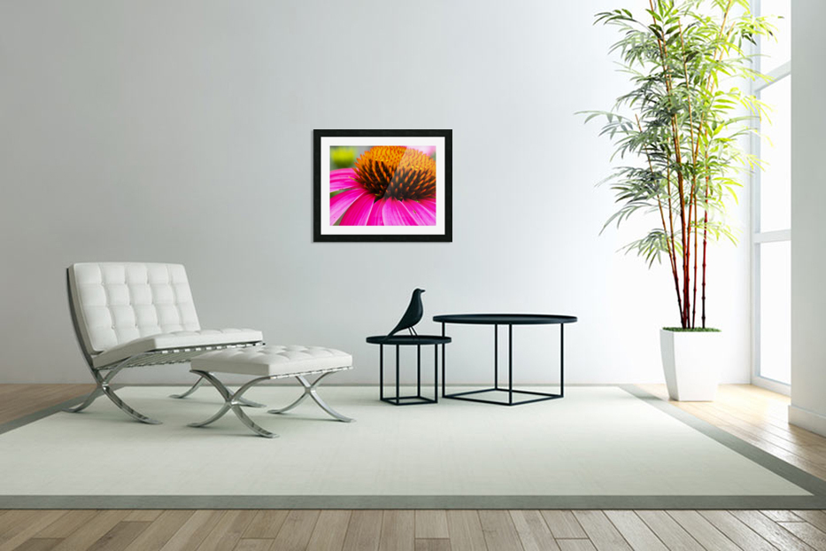 Cone Flower in Custom Picture Frame