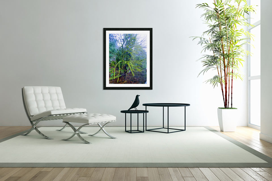 MOSSY BRANCHES in Custom Picture Frame