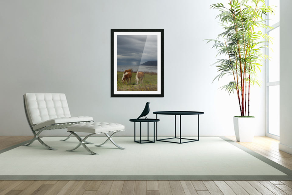 Chevaux in Custom Picture Frame