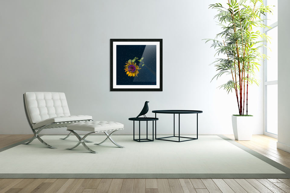 Sunflower in Space in Custom Picture Frame