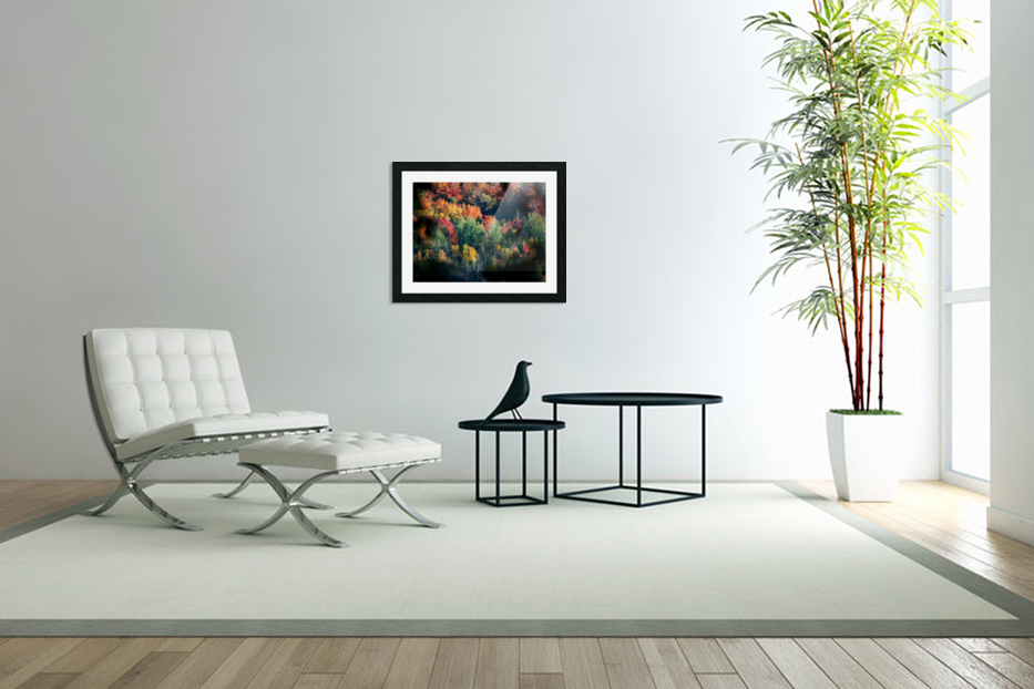 autumn abstract view in Custom Picture Frame
