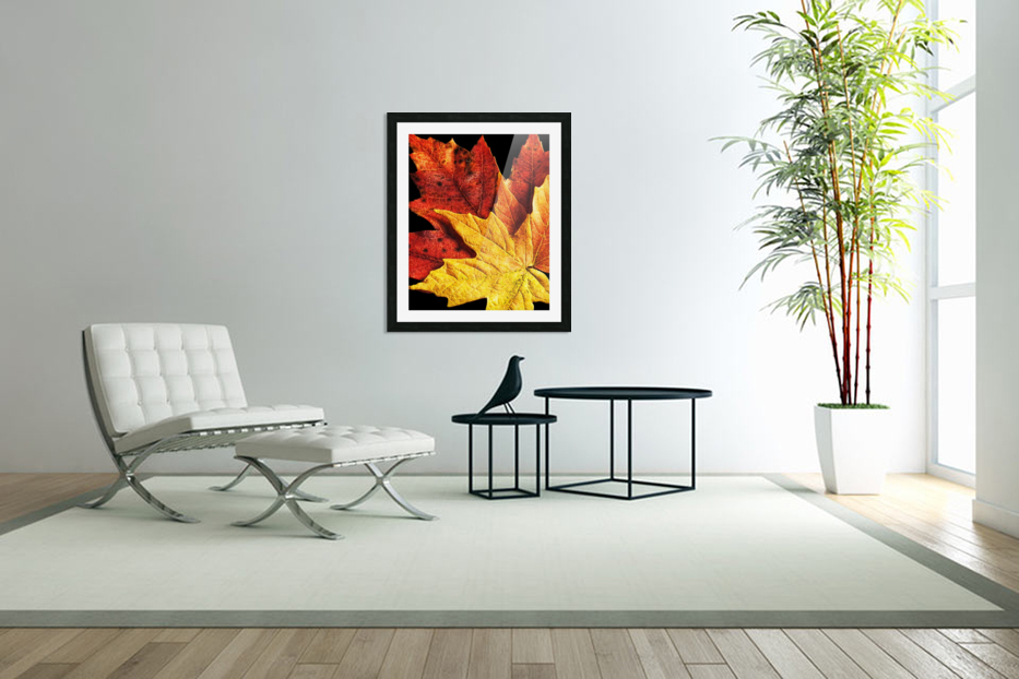 Fall Maple Leaves 2 in Custom Picture Frame