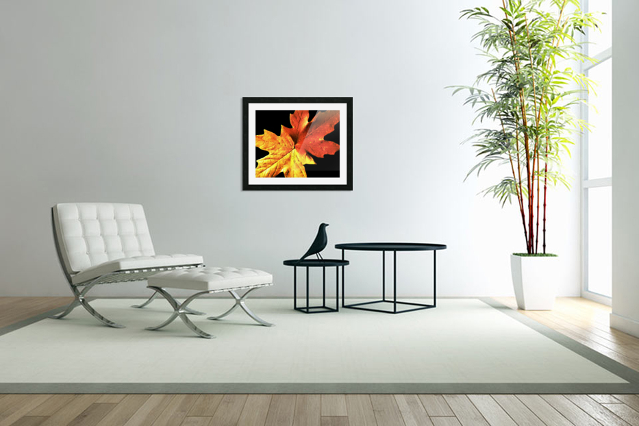 Fall Maple Leaves 3 in Custom Picture Frame