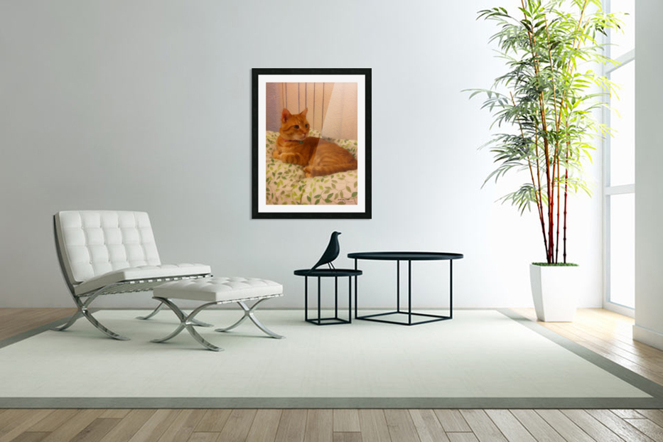 Cat in Custom Picture Frame