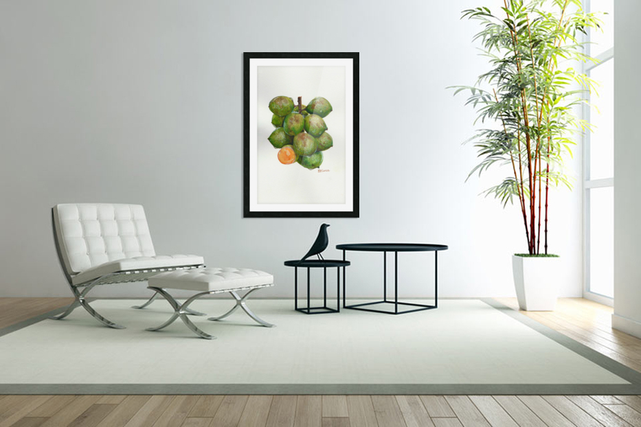 Spanish Lime in Custom Picture Frame