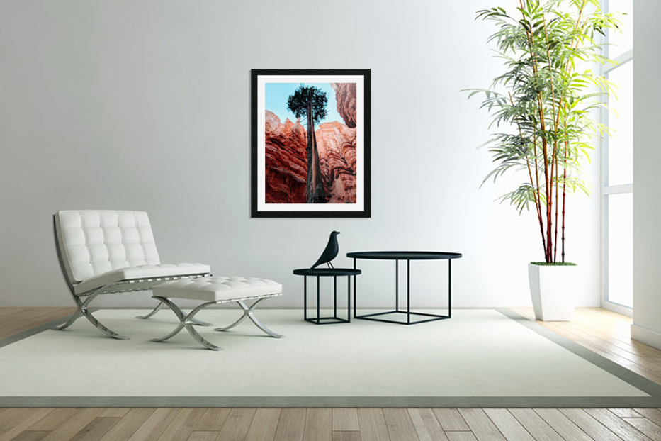 Bryce Canyon II in Custom Picture Frame