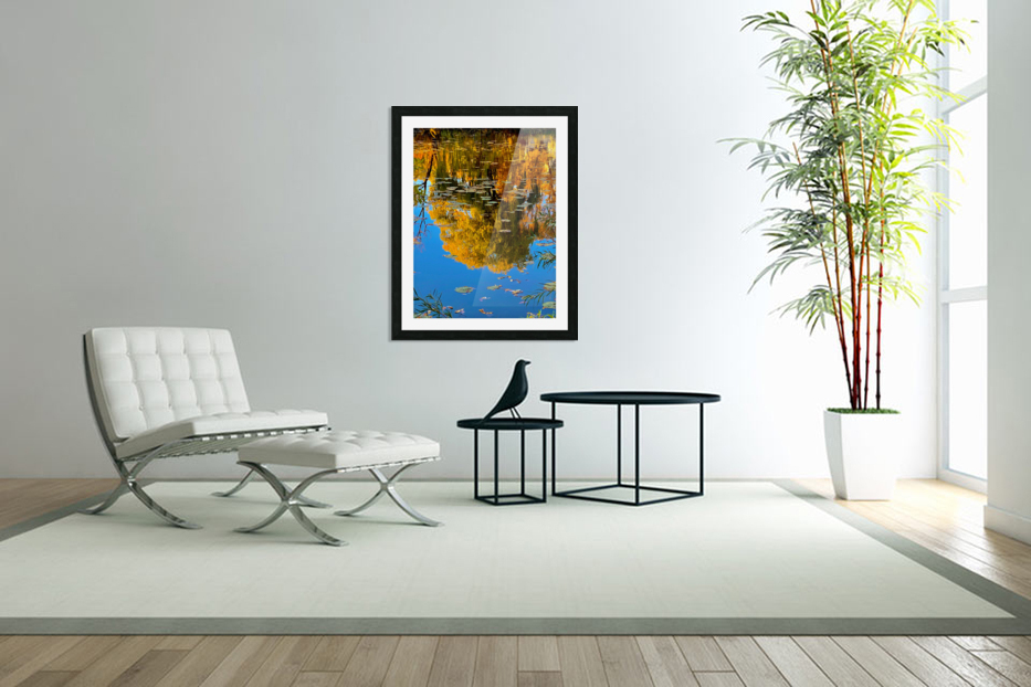 autumn reflection in Custom Picture Frame