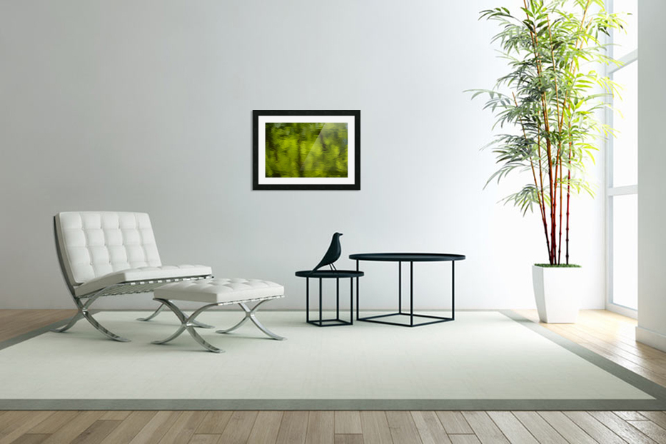 Flowing reflections spring in Custom Picture Frame
