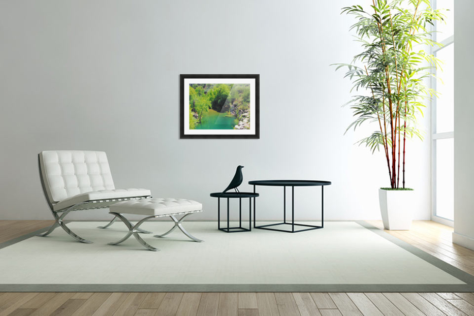Pond in Custom Picture Frame