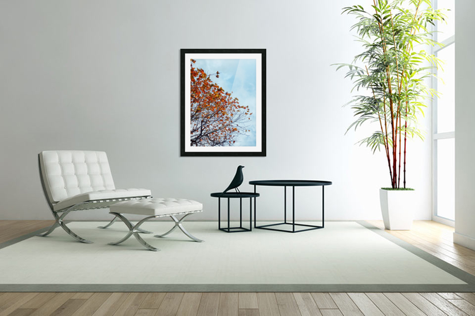 Tree branch with orange autumn leaves and blue cloudy sky in Custom Picture Frame