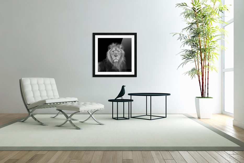 Lion face in Custom Picture Frame
