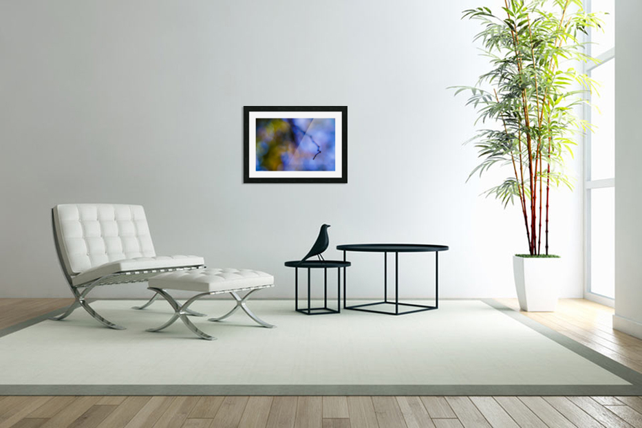 Automnejf 11  in Custom Picture Frame