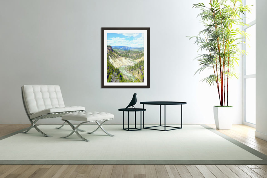 Wild Yellowstone in Custom Picture Frame