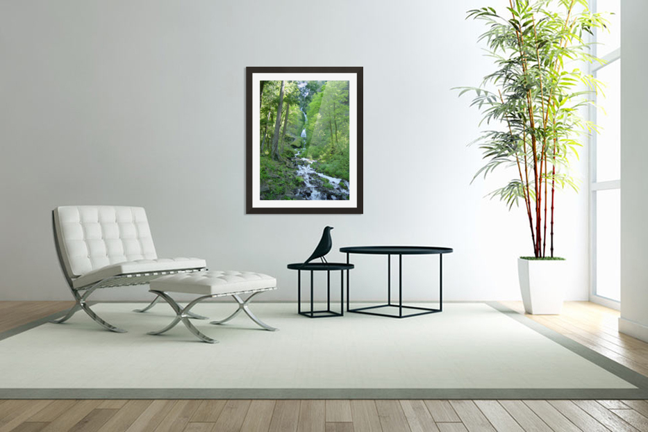 Forest Dreams in Custom Picture Frame