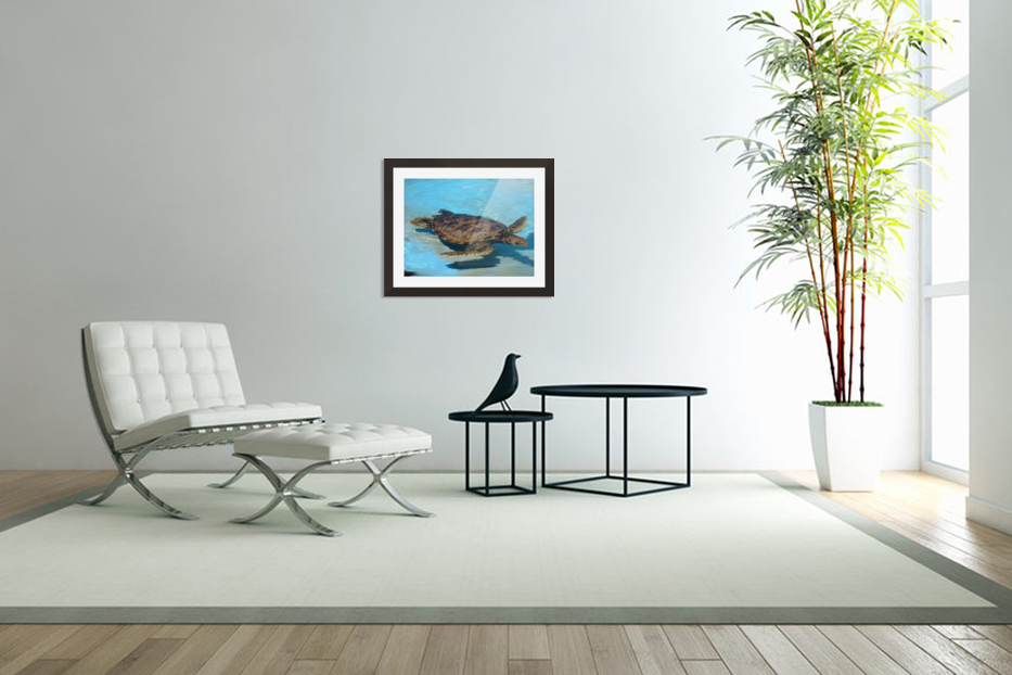 Sea Turtle in Custom Picture Frame