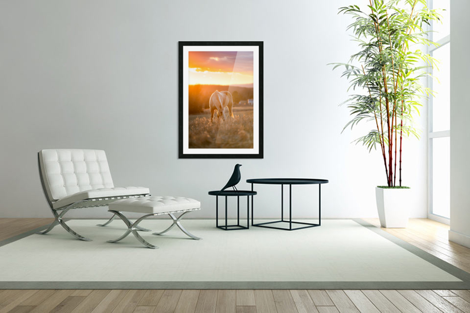 White Horse at Sunset in Custom Picture Frame