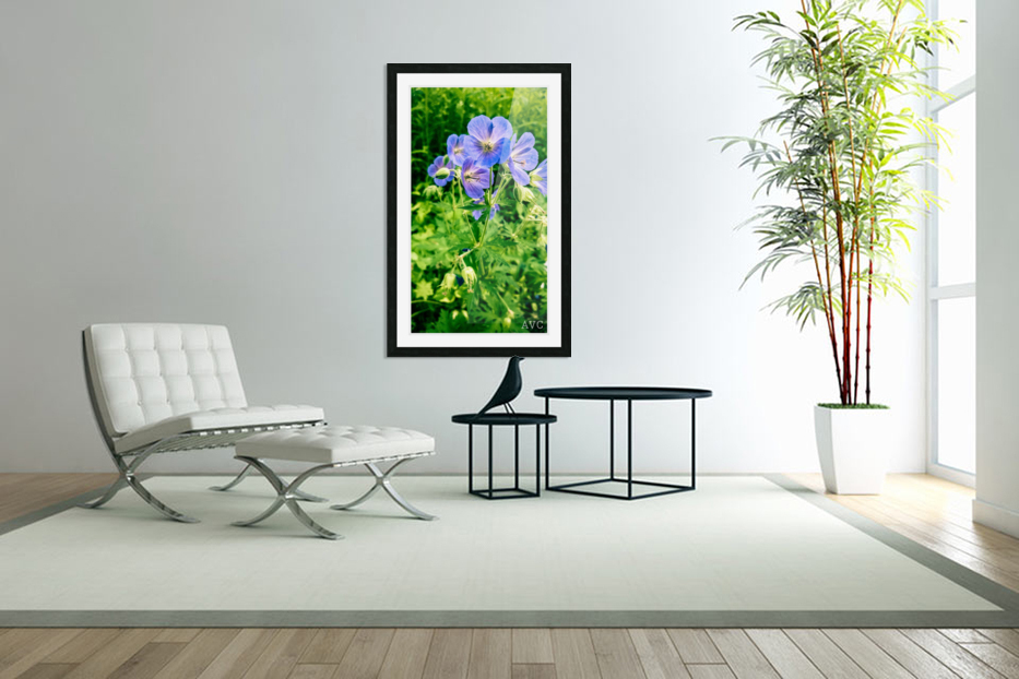 Periwinkle in Custom Picture Frame