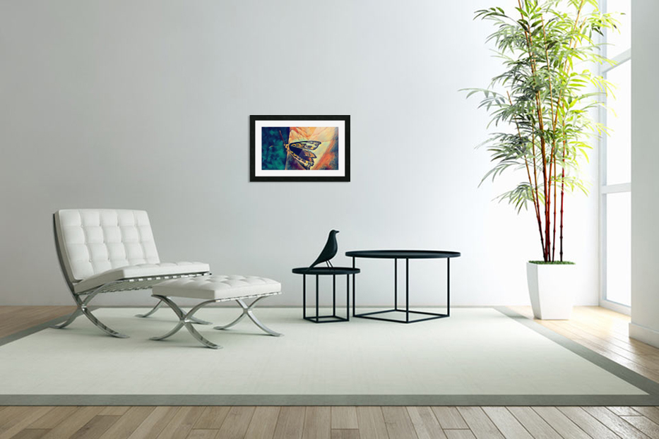 butterfly art in Custom Picture Frame