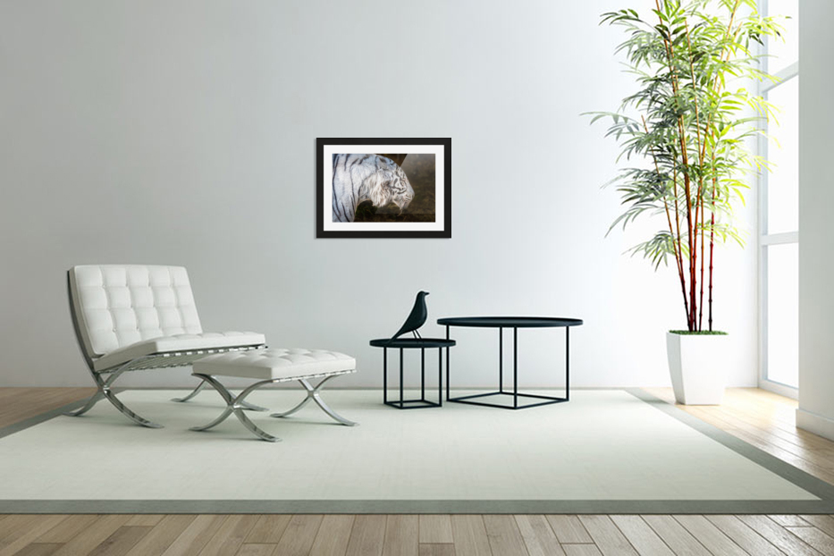 White Bengal Tiger 2 in Custom Picture Frame
