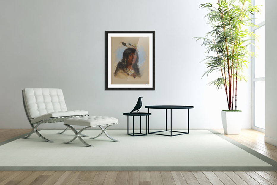 Big Bowl - Indian Chief in Custom Picture Frame