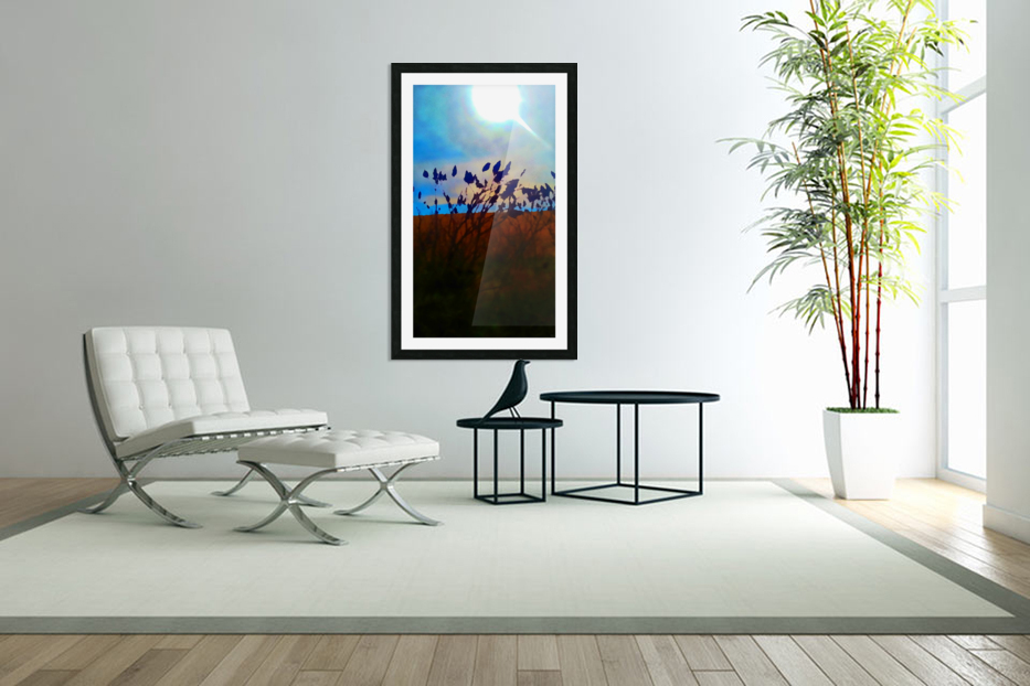 Mid Afternoon Beauty in Custom Picture Frame