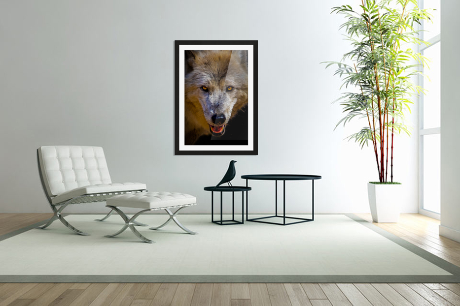 Wolf 2 in Custom Picture Frame