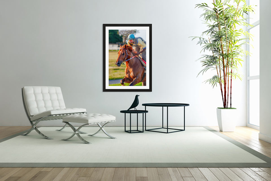 Racehorse11 in Custom Picture Frame
