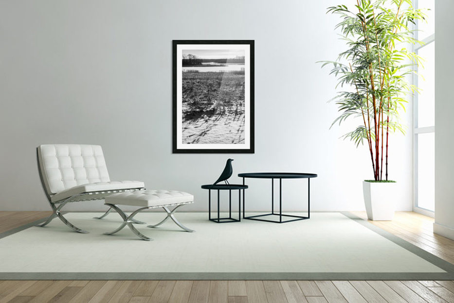 Cattails at Dawn in Custom Picture Frame