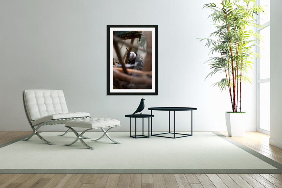 Through The Trees  Marmoset  in Custom Picture Frame
