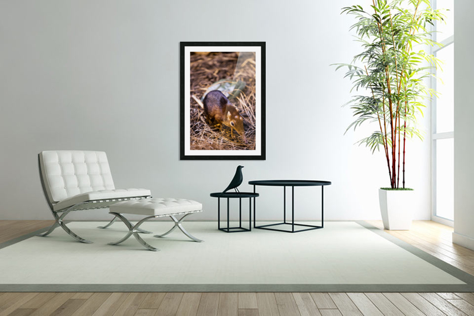 Small Elephant Mouse in Custom Picture Frame