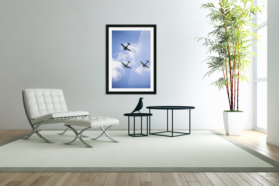 Fly By in Custom Picture Frame