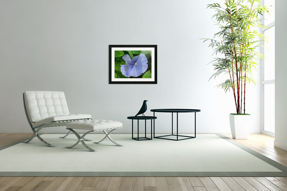 Refreshing Nature in Custom Picture Frame