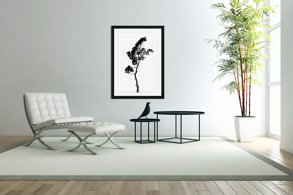 Tree silhouette in Custom Picture Frame