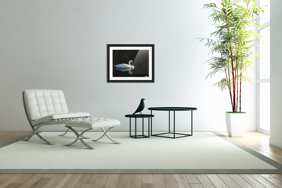 Trumpeter Swan at Estuary in Custom Picture Frame